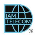 Diam Telecom logo
