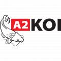 A2koi logo