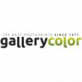 Gallery Color logo