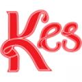 Kesvisum logo
