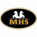 Minihorseshop logo