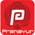 Pranayur.nl logo
